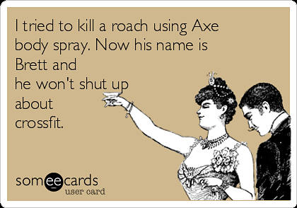 i-tried-to-kill-a-roach-using-axe-body-spray-now-his-name-is-brett-and-he-wont-shut-up-about-crossfit-0452f.png