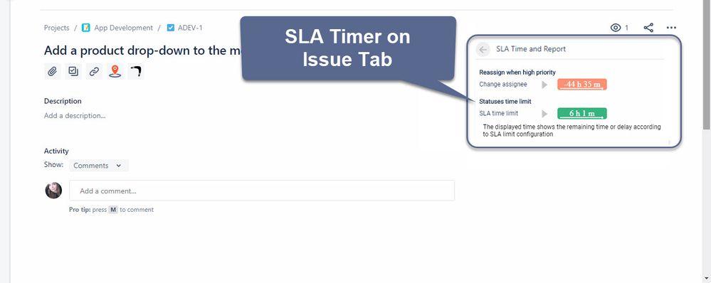 Issue Tab.jpg