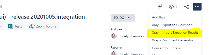 import-test-executions-to-jira-ui.PNG