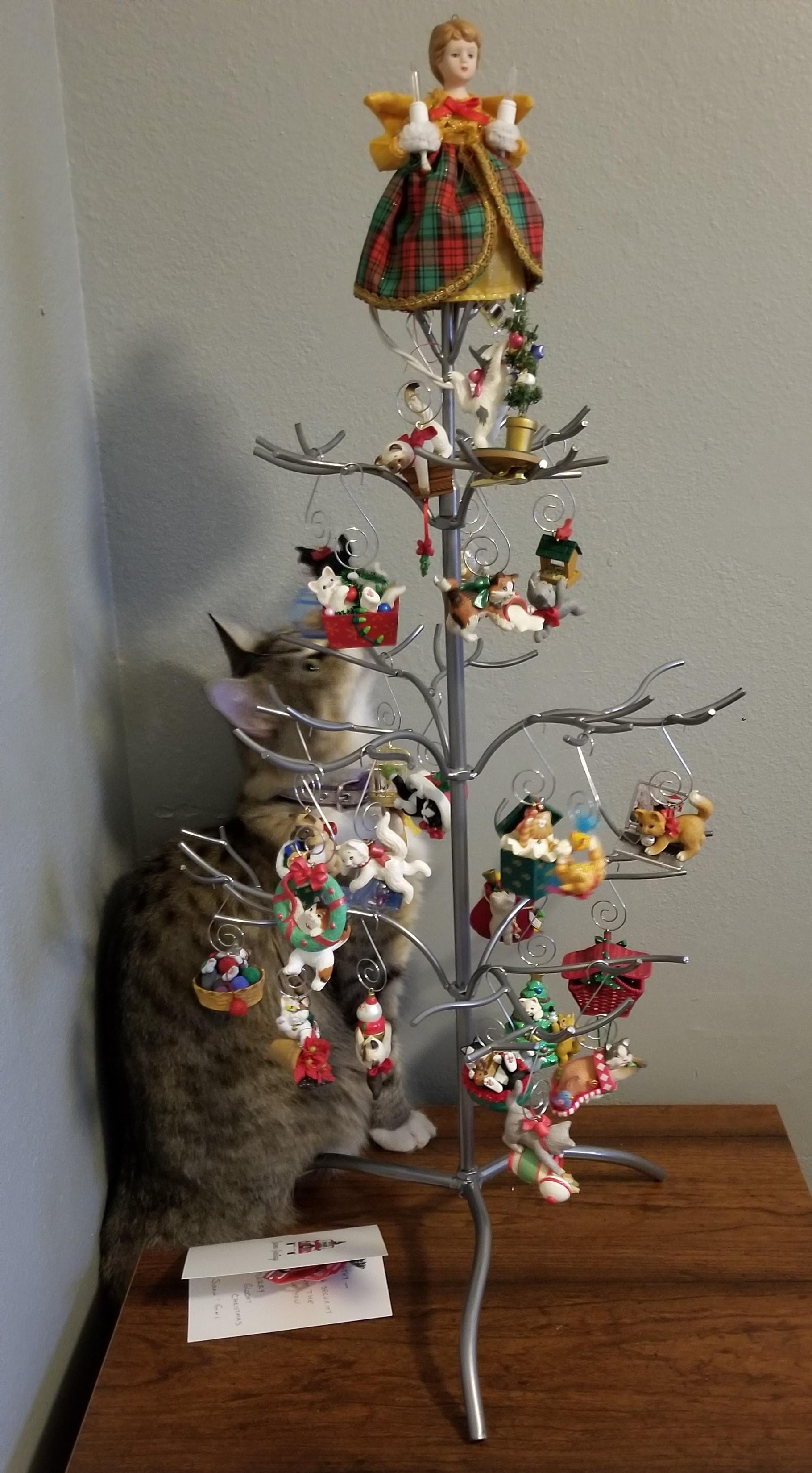 Hera small tree.jpg