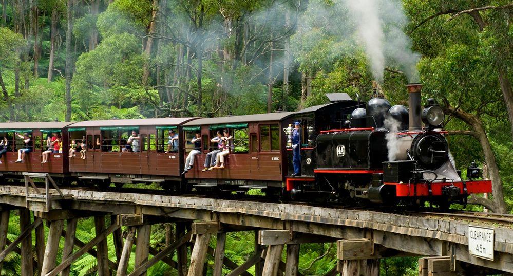 Puffing-Billy-Heritage-Steam-Train-1.jpg