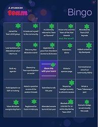 team 21 bingo - small.jpg