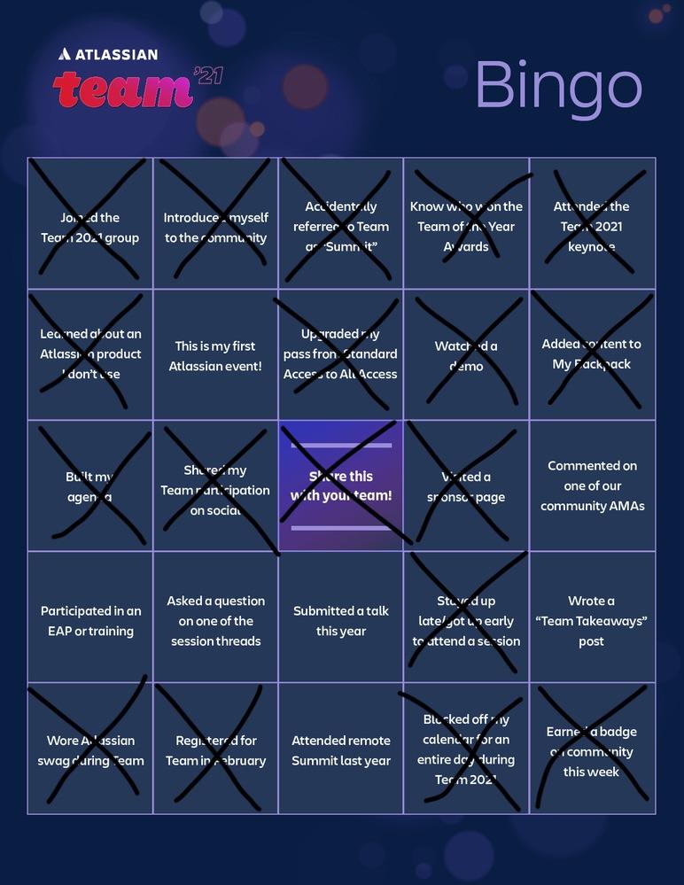 Team 2021 Community Bingo Card-DRN@2x (1).jpg