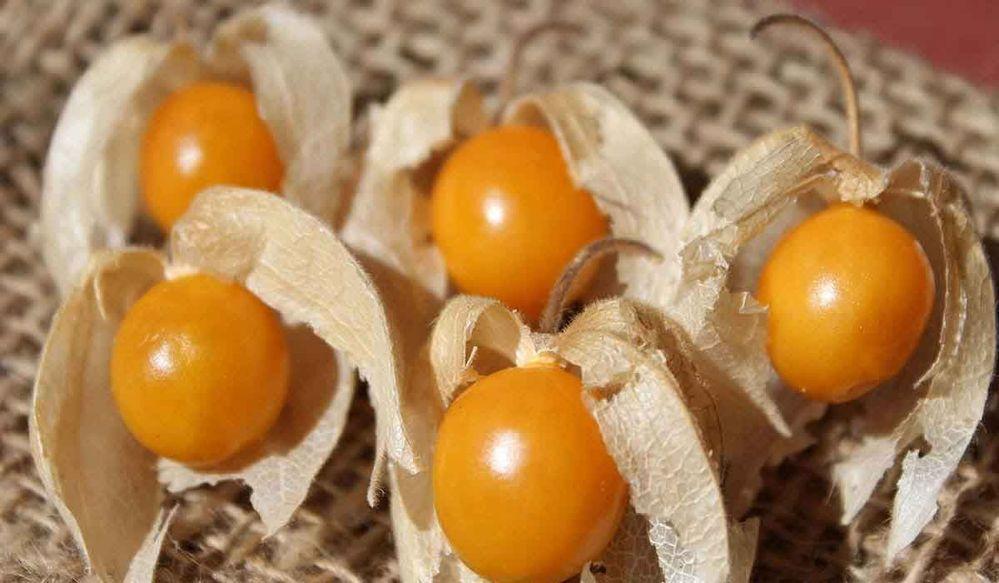 Cape-Gooseberries
