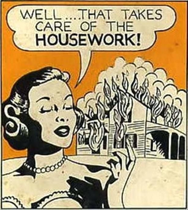 house-cleaner-meme-house-cleaning-memes-amazing-pictures-2-burn-your-house-down-funny-pictures-house-cleaning-memes.jpg