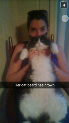 cat beard.png