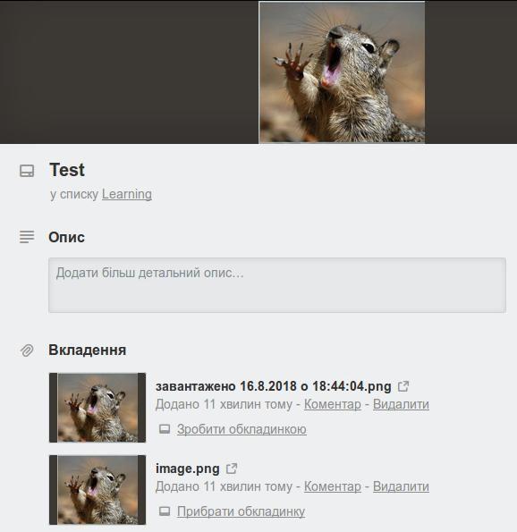 trello_bug.jpg