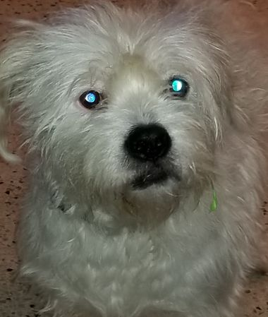 Teddy2!!.jpg