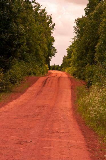 red soil.jpg