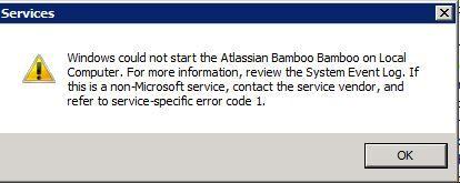 Bamboo Service Error Message.JPG