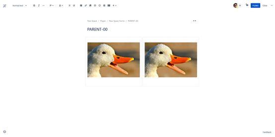 ImageEditQuack.jpg