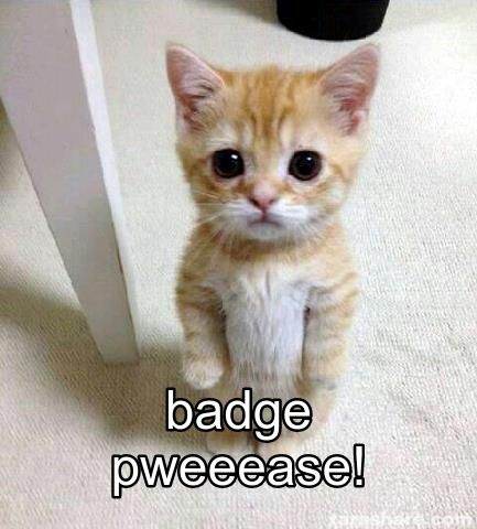 badge_kitten.jpg