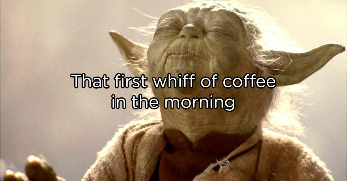 coffee-memes-full-lead