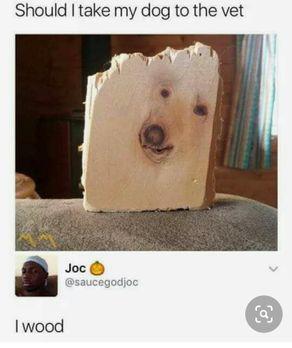 dog_vet_WOOD.jpg