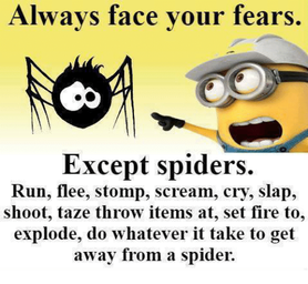 always-face-your-fears-except-spiders-run-flee-stomp-scream-23672902.png