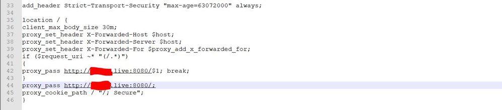 nginx.conf2.JPG