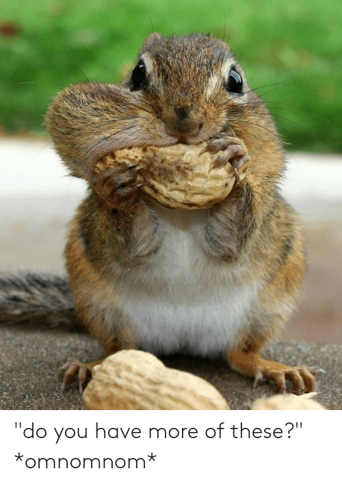 do-you-have-more-of-these-omnomnom-47595940.png