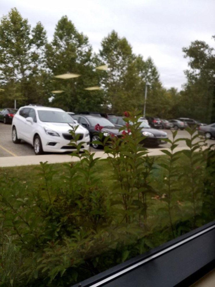 View Outside Window2.jpg