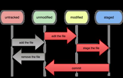 file status cycle.png