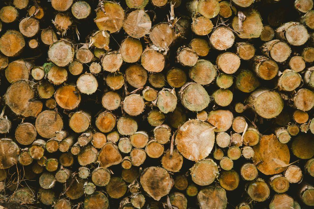 logs-smaller.jpg