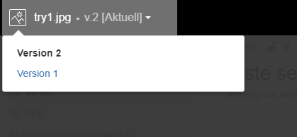 Version vergleich pictureviewer confluence.PNG